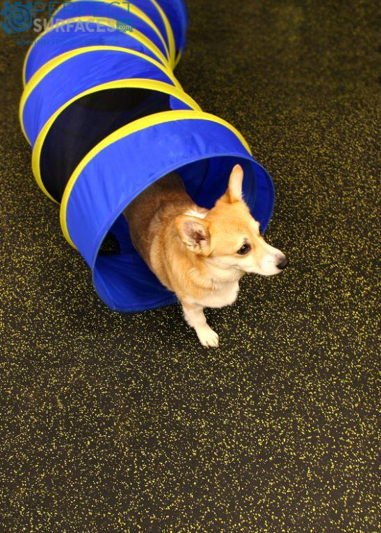 Dog Rubber Flooring