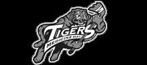 medicine-hat-tigers.png