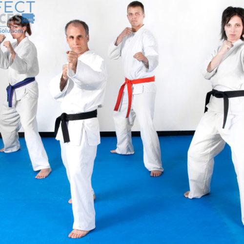 Martialt art or wrestling EVA foam Interlocking tiles