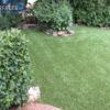 backyard landscape turf