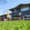 backyard synthetic grass