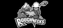 calgary-roughnecks.png